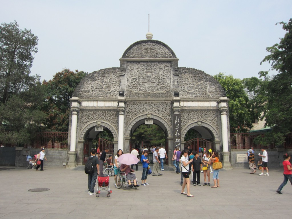 Last day in Beijing and where do we go...the zoo.