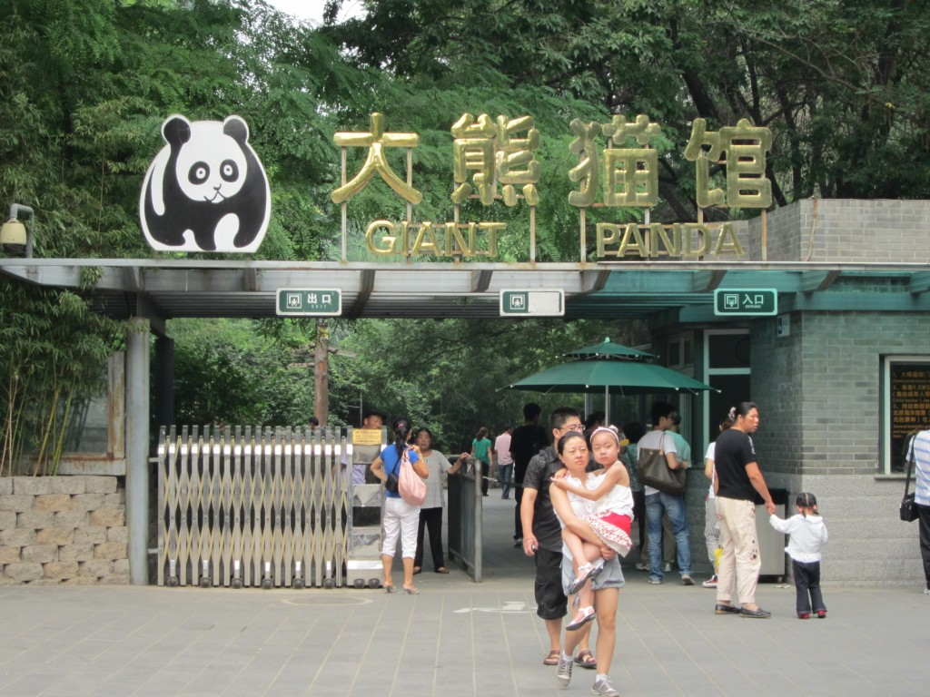 Off to see the pandas...