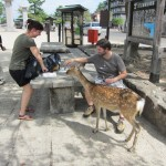 ...right next to the paper-eating deer. [2010/09/21 - Miyajima]