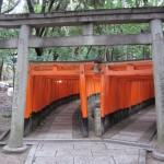 Torii, toriis and more toriis. [2010/09/23 - Kyoto/Fushimi Inari-taisha]