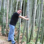 Checking out the bamboo... [2010/09/23 - Kyoto/Fushimi Inari-taisha]
