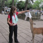 Pauline and the map-eating deer. [2010/09/24 - Nara]