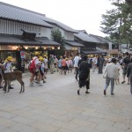 The Yellow Horde arrives (Nara is seriously overrun with tourists). [2010/09/24 - Nara]