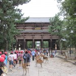 'The Historic Monuments of Nara' are yet another UNESCO World Heritage site. [2010/09/24 - Nara]