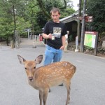 At least the deer don't seem to be interested in coffee. [2010/09/24 - Nara]