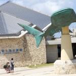 Okinawa Churaumi Aquarium / Motobu [2012/10/04 12:21:26]