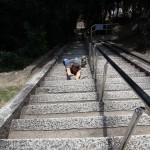 Somewhere in Himeji [2012/10/13 12:12:50]