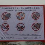 Tai O-Hong Kong