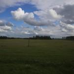 TSR-Moscow-Irkutsk-view_04