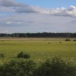 TSR-Moscow-Irkutsk-view_05