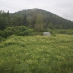 TSR-Moscow-Irkutsk-view_09
