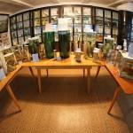 bolshiye-koty-museum