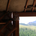 At our camp in Terelj National Park (2014/07/21 12:29:34+08:00)