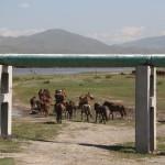 On the road back to Ulaanbaatar (2014/07/22 11:06:36+08:00)