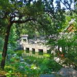 Beihai Park, Beijing (2014/07/26 14:11:28+08:00)