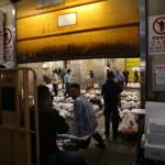 Tuna auction, Tsukiji Fish Market, Tokyo (2014/08/12 05:46:45+09:00)