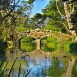 sanfrancisco-44-the_troll_bridge_in_hdr-20150303_103645_s120_img_3215_down1600