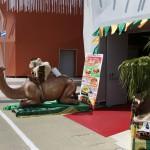 Mauritania Pavilion, EXPO 2015 (Rho Fiera), Milan (2015/08/05 16:07:57+02:00)