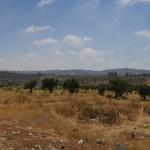 Hebron Road, Palestinian Territory (2016/07/04 14:31:38+03:00)