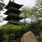 026-since_i_finished_the_arakawa_trail_earlier_than_expected_i_hopped_over_to_ueno_for_a_walk_in_the_park-and_take_pictures_of_the_pagoda-20160425_142145_6d_img_3084_down1920