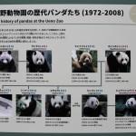 137-Panda_info_panels_2-20160502_094359_6d_img_3710_cropped_qual100_down1920