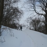 067-So_we_followed_a_path_uphill_because_there_was_a_sign_pointing_to_a_Waterworks_Museum-TZ2_JST_20170207_123120_g7x_img_4739_down1920